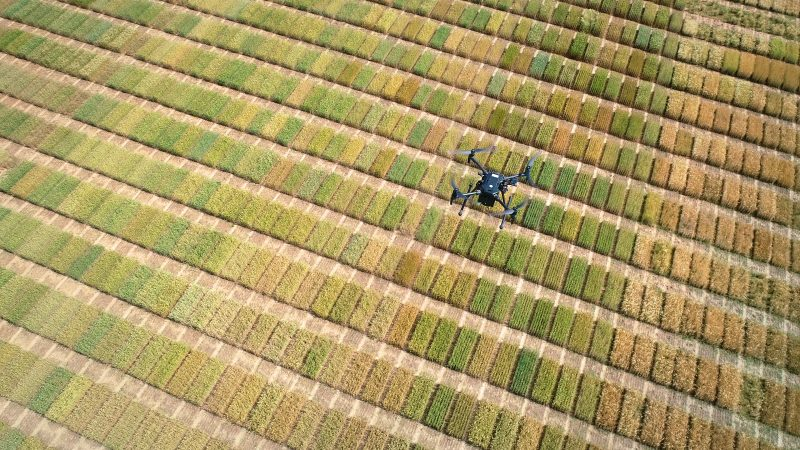 How Drones are Elevating Intelligence in Agriculture
